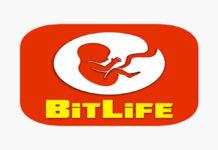 Bitlife Hack