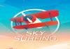 Sky Surfing Hack
